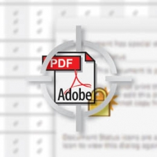 Encrypted PDF